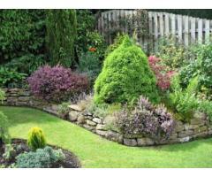 Специалист ищет работу садовника. Садовый дизайн.