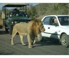 Путешествие в Африку.Туры в ЮАР.
