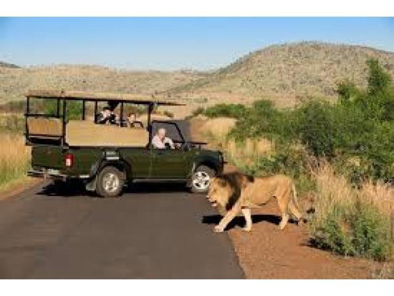 Путешествие в Африку.Туры в ЮАР. - 9