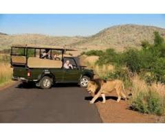 Путешествие в Африку.Туры в ЮАР. - Image 9