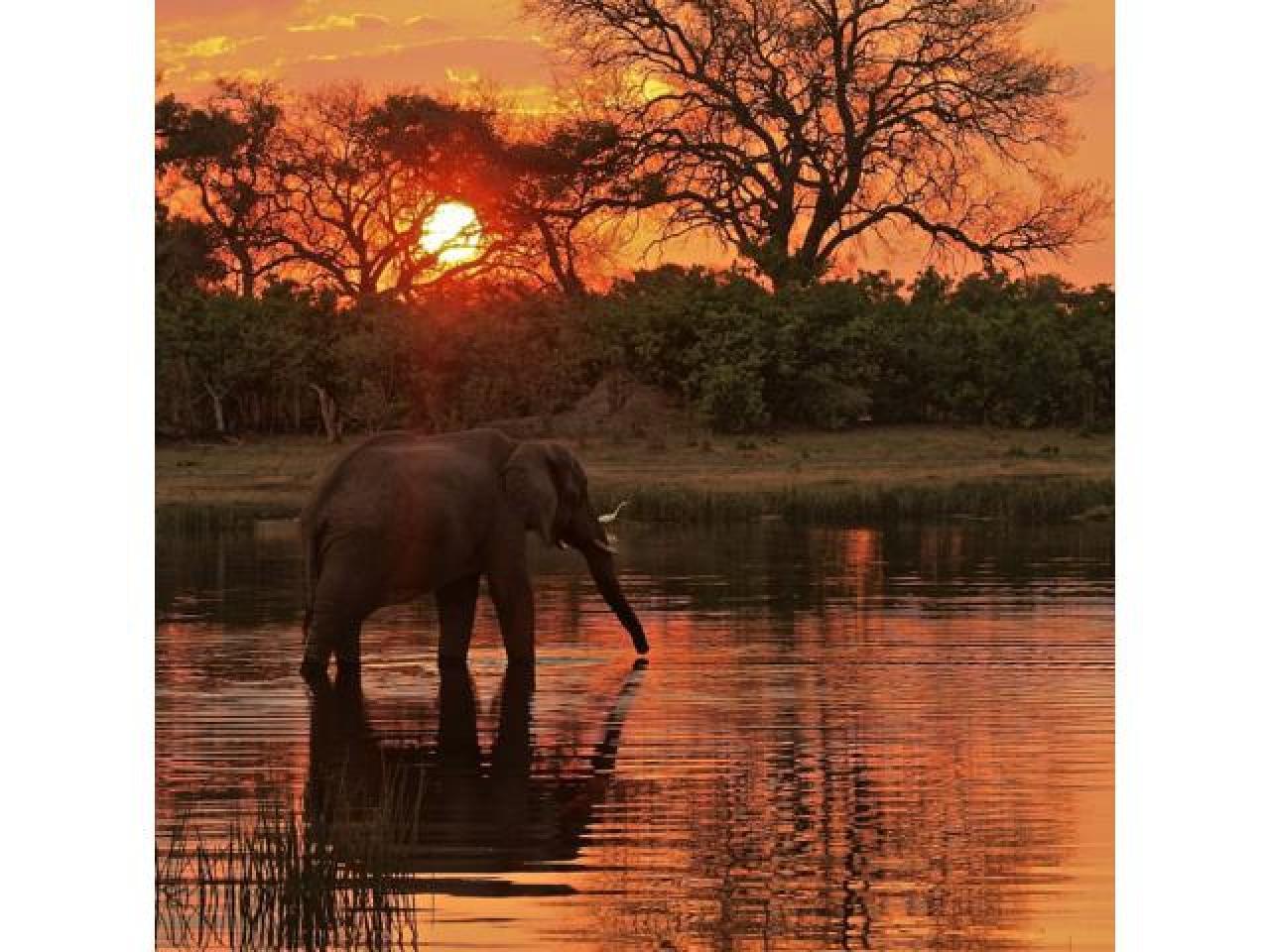 Путешествие в Африку.Туры в ЮАР. - 12
