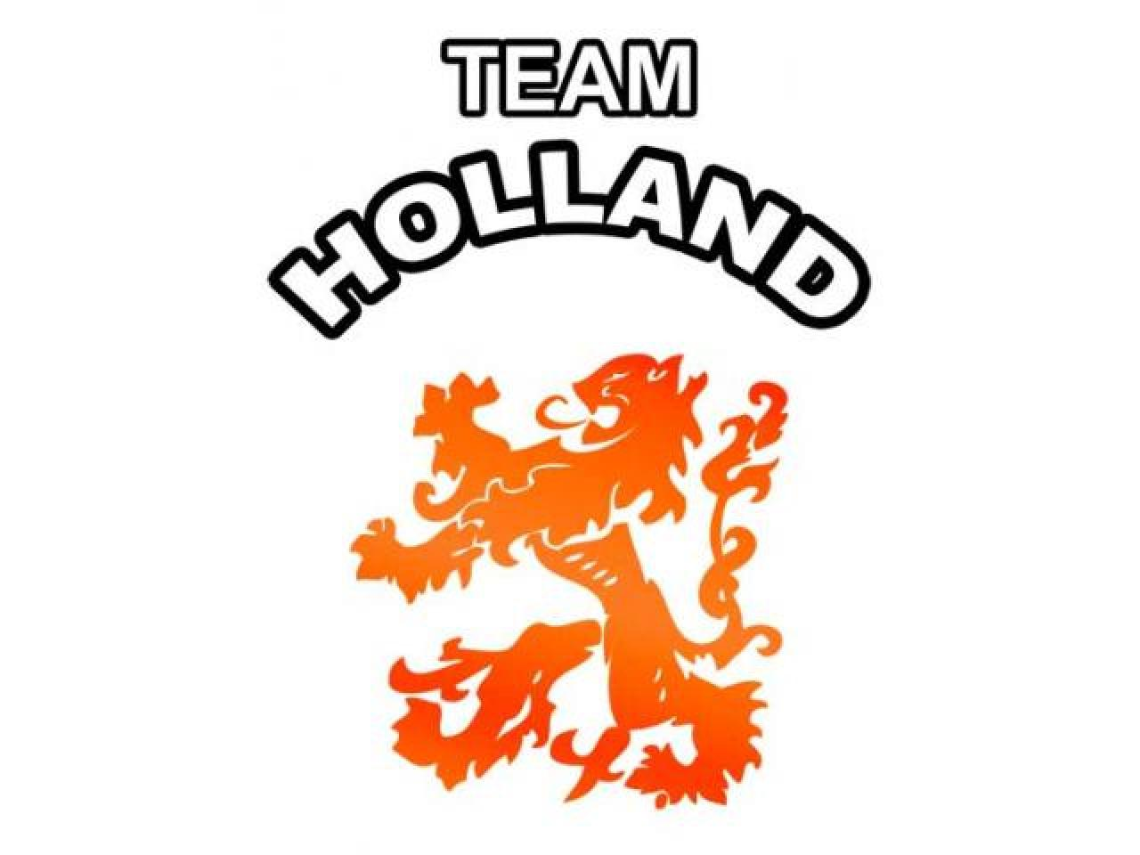 Работы в Голландия ( около Роттердама). - 1