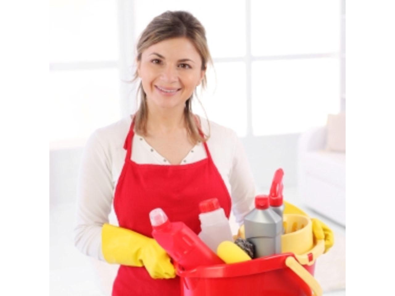 Ищем ВИП домработницу в Англию. от 500 фунтов в неделю - 1