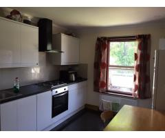 Cдаю double  комнатy хорошем доме в Ilford - Seven Kings station, - Image 3