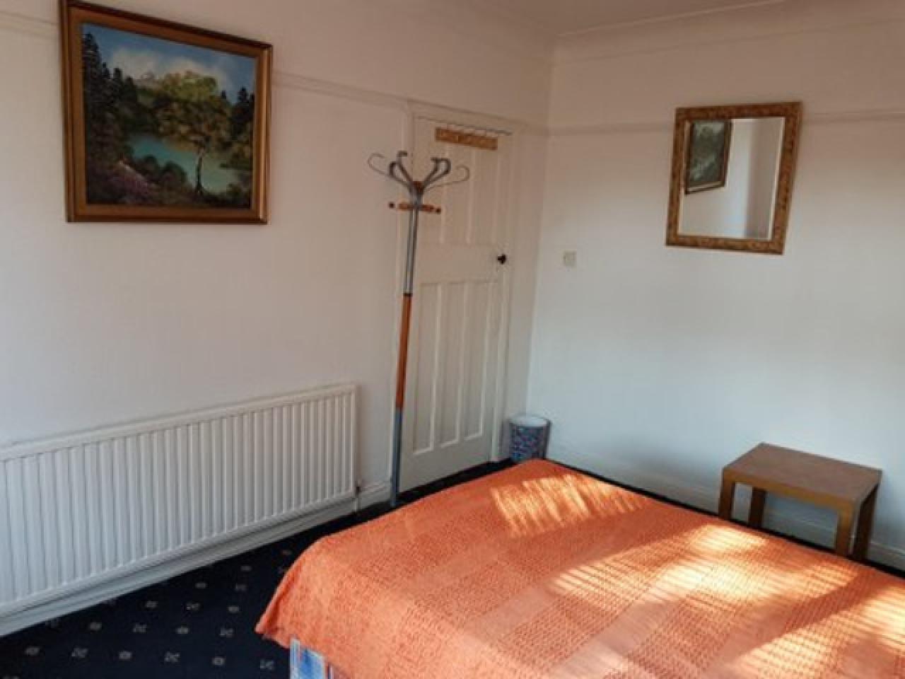 Очень большая комната на Леутон Лондон - 4