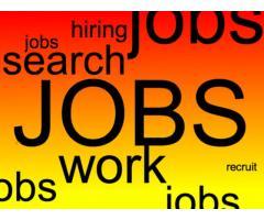 Со следующей недели требуются работники в Лондоне на свободные вакансии в разных сферах.