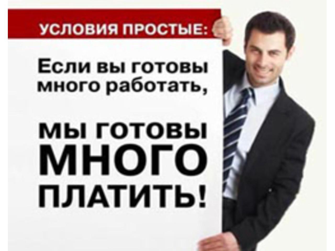 Продам готовый интернет-бизнес - 1