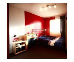 Double Room in Stratford, 2 человека в квартире