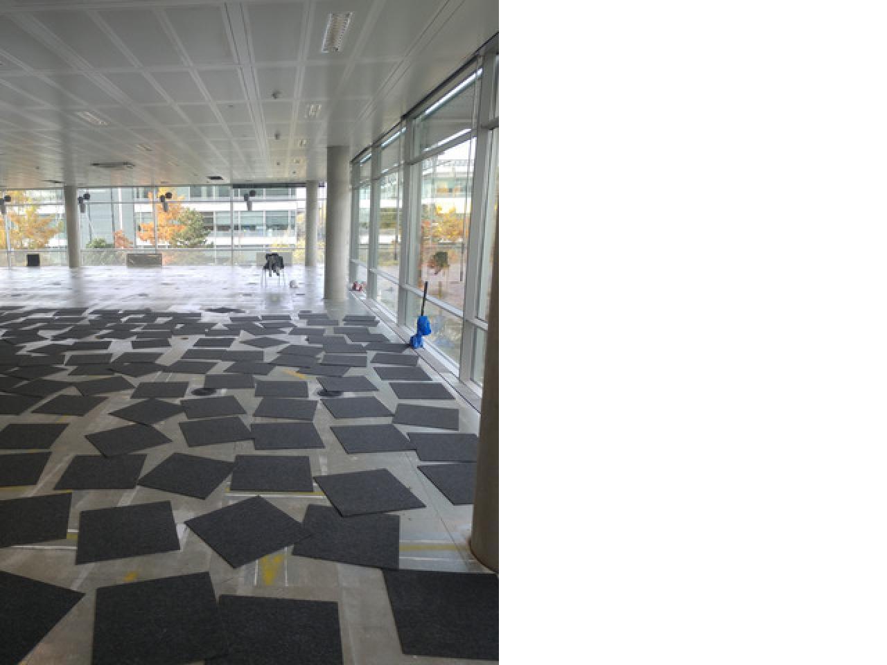 Сервис качественного коврового покрытия! (carpet) - 1