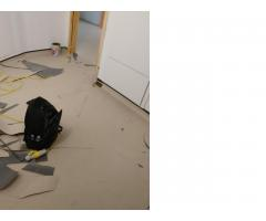 Сервис качественного коврового покрытия! (carpet) - Image 4