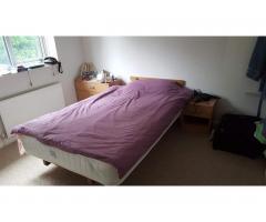 Сдаётся двухместная, чистая комнатa для девушки - Image 3