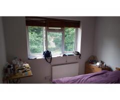 Сдаётся двухместная, чистая комнатa для девушки - Image 4