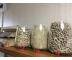 Компания «Голд Вуд» имеет возможность производить и поставлять пиломатериал естественной влажности и - Image 4