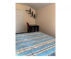 Double Room £150 per week - Image 2