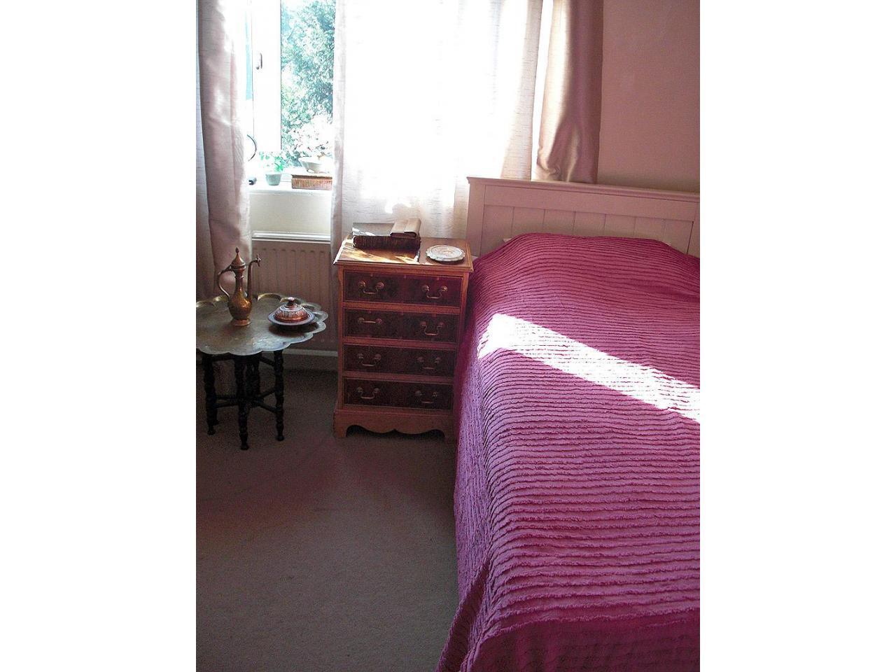 Сдается сингл комната в Твикенэме (West London, Borough of Richmond) - 1