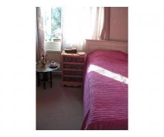 Сдается сингл комната в Твикенэме (West London, Borough of Richmond) - Image 1