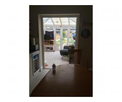 Комната в Southend-on-Sea - Image 8