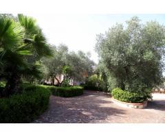 Эксклюзивная вилла для отдыха в Алессано, Апулия, Италия - Image 11