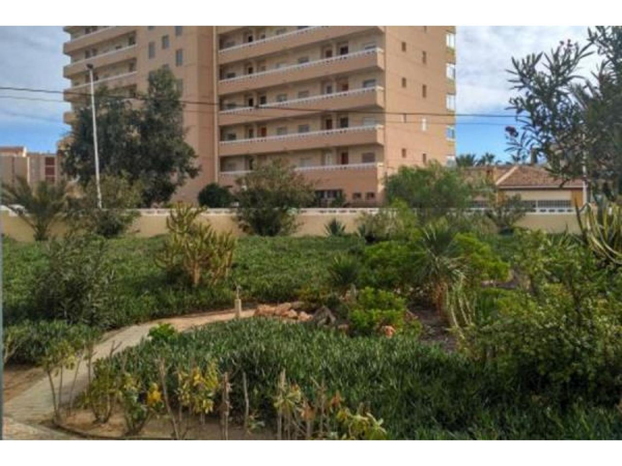 Недвижимость в Испании, Новые квартиры рядом с пляжем от застройщика в Ла Мата,Торревьеха - 1