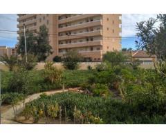 Недвижимость в Испании, Новые квартиры рядом с пляжем от застройщика в Ла Мата,Торревьеха - Image 1