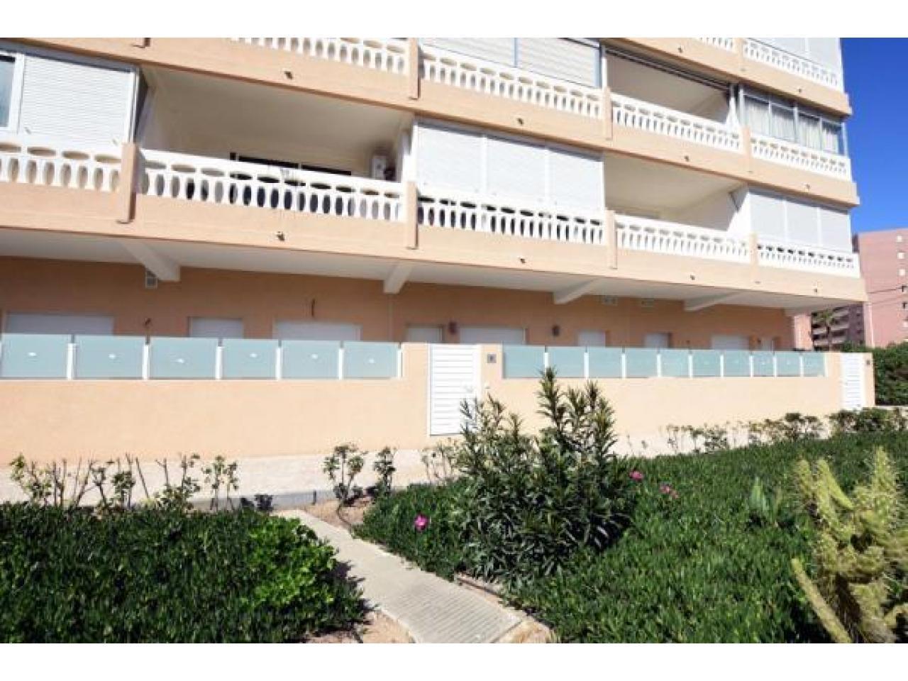 Недвижимость в Испании, Новые квартиры рядом с пляжем от застройщика в Ла Мата,Торревьеха - 3