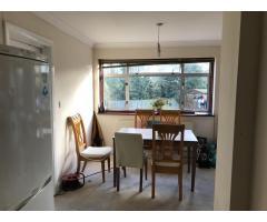 Дабл Комнаты на Сдачу, Neasden, Sudbury Hill, Mill Hill. - Image 2