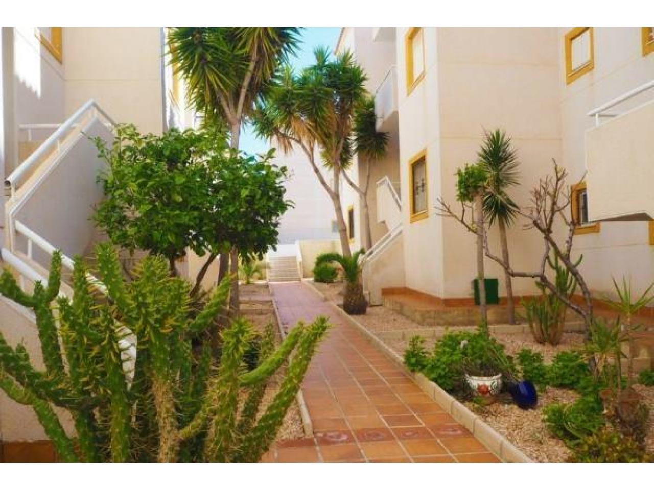 Недвижимость в Испании, Квартира c видами на море в Торревьеха,Коста Бланка,Испания - 5