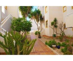 Недвижимость в Испании, Квартира c видами на море в Торревьеха,Коста Бланка,Испания - Image 5